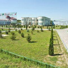 На уход за садами Кадырова потратят 35 миллионов рублей