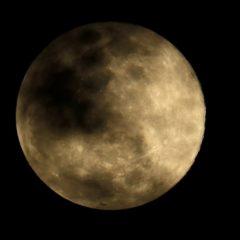«Роскосмос» ответил на заявление главы NASA о лидере в освоении Луны