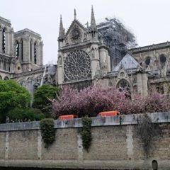 В Париже движение по острову Сите остается ограниченным