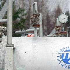 Путин заявил о серьезном ущербе экономике и имиджу РФ из-за грязной нефти в трубопроводе «Дружба»