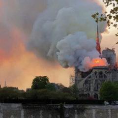Эксперт сравнил пожар в Нотр-Даме с уничтожением культурного наследия в САР