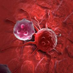 Названа причина трудности лечения рака