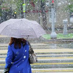 В Росгидромете сравнили прогноз погоды с фронтовыми сводками