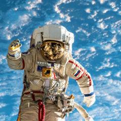 Ученые рассказали о смертельной опасности длительных полетов в космосе