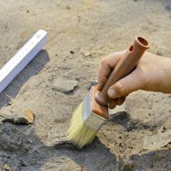Власти Москвы рассказали о находках археологов в 2019 году